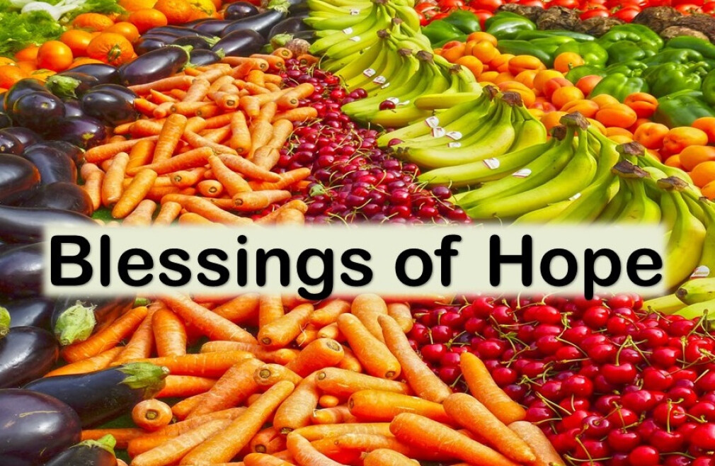Blessings of Hope Food Distribution Ministry